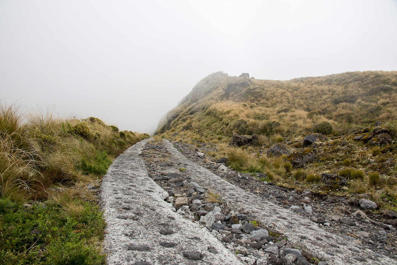 hiking_trail_newzealand