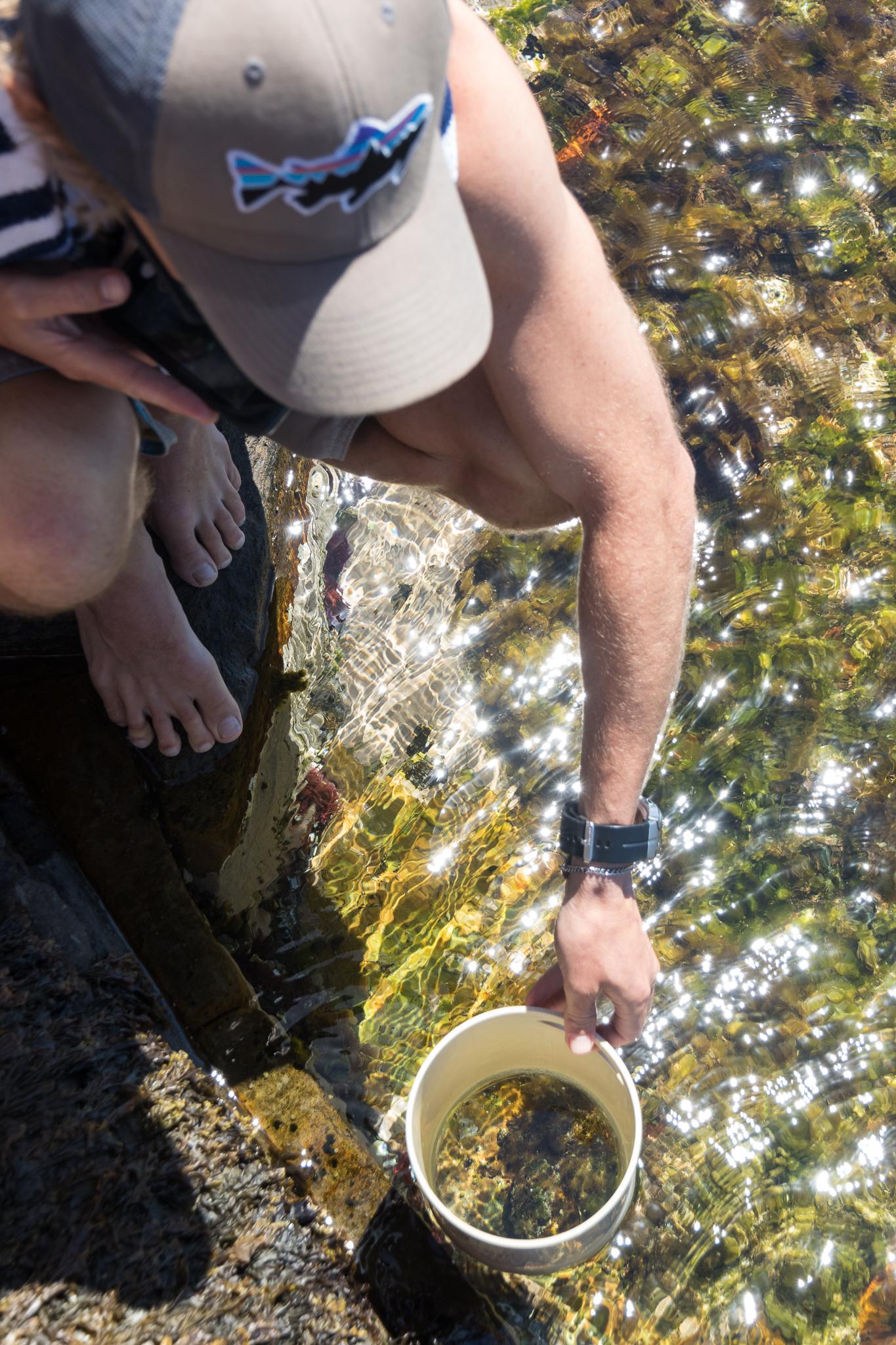 captown_marine_biologist.jpg