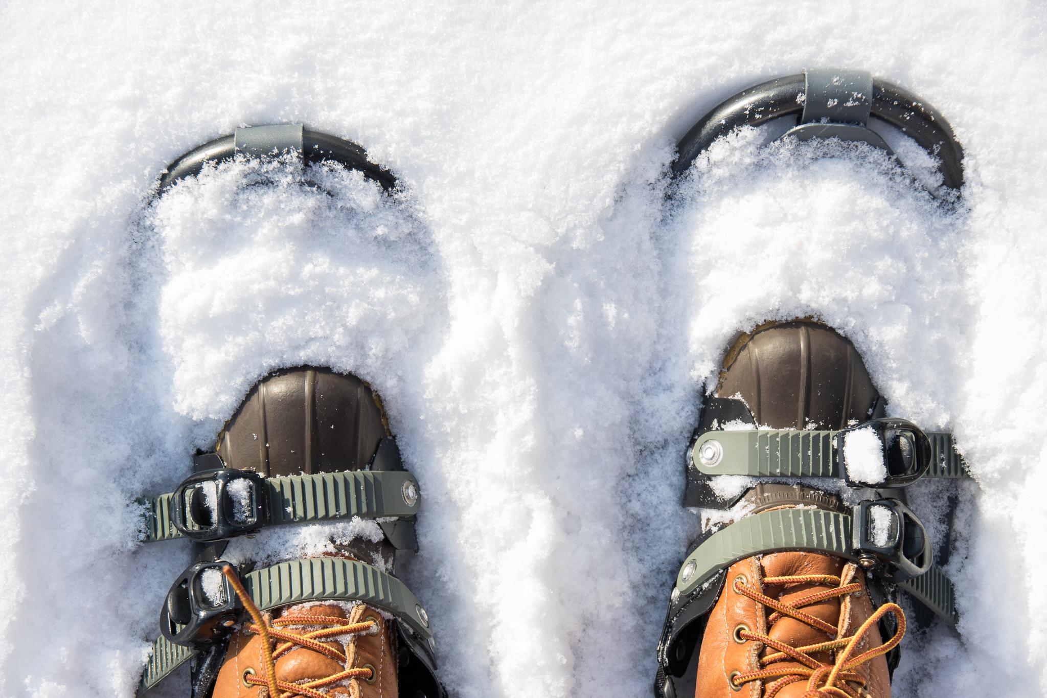 snowshoes_snow
