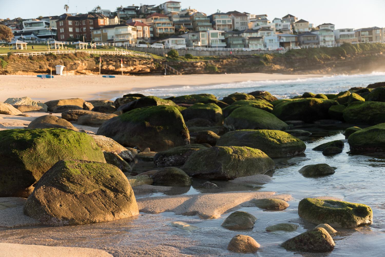 sydney_beach_suburb-1.JPG