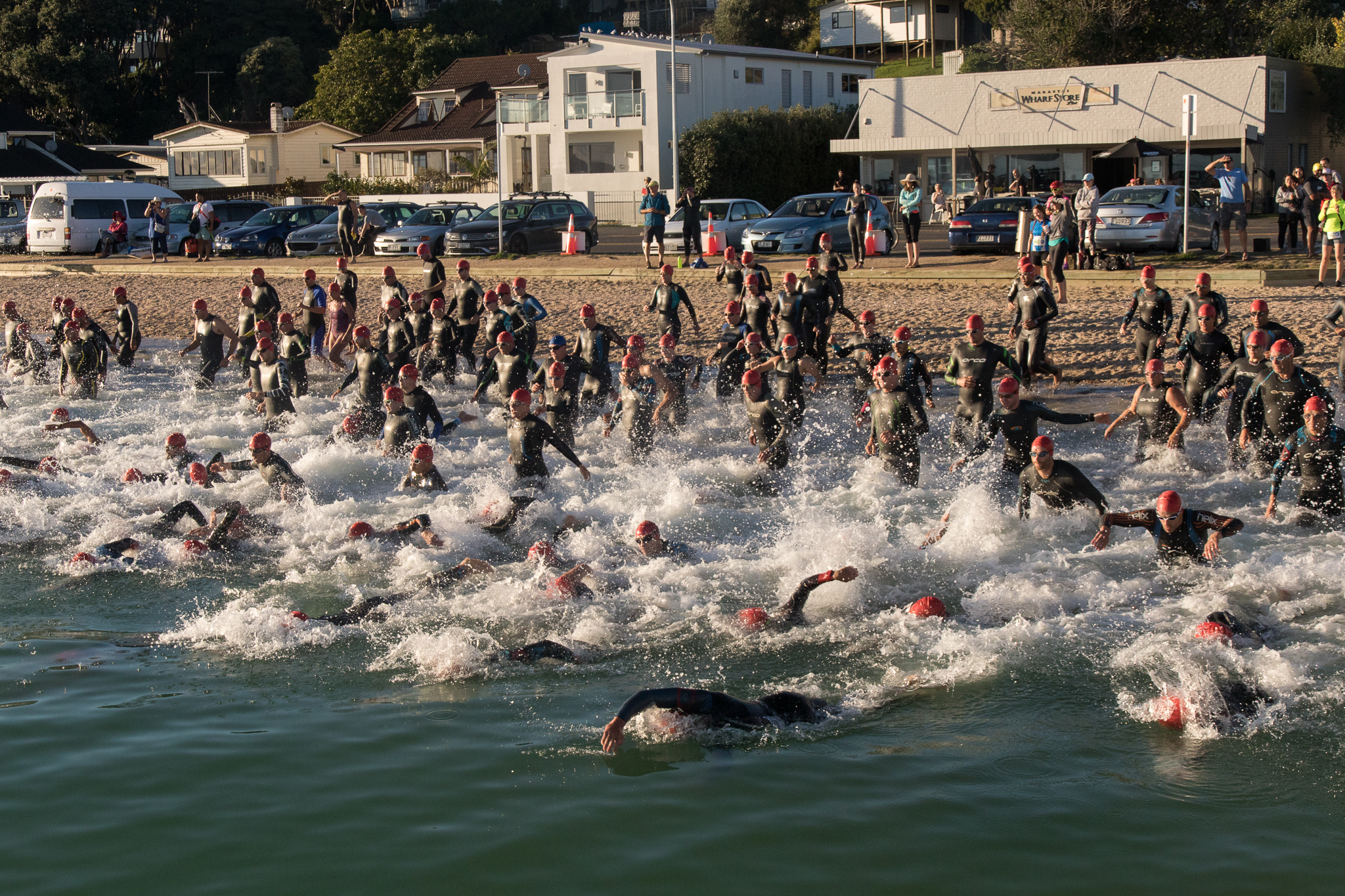 newzealand_triathlon_swimmers.JPG