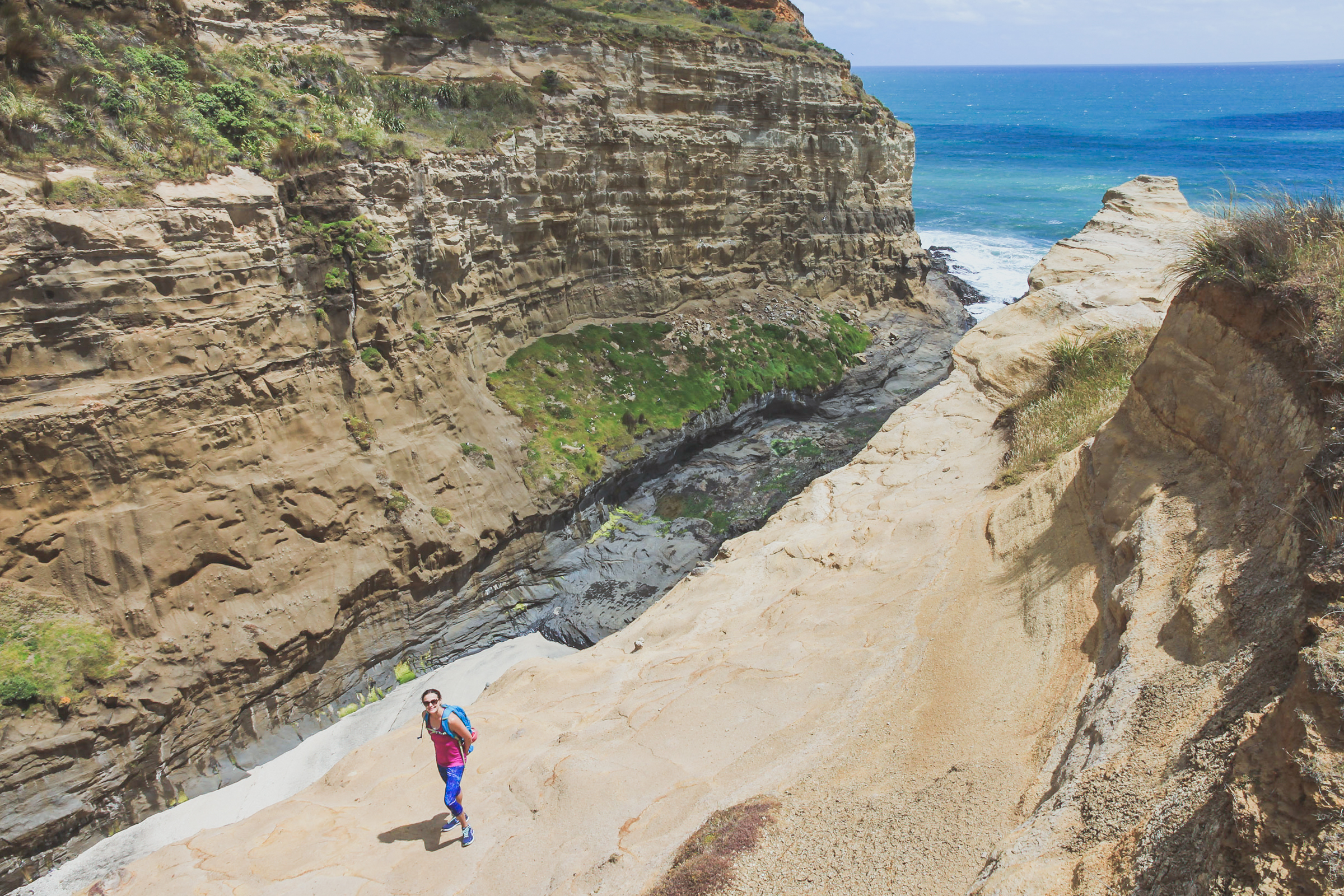 te henga walkway views