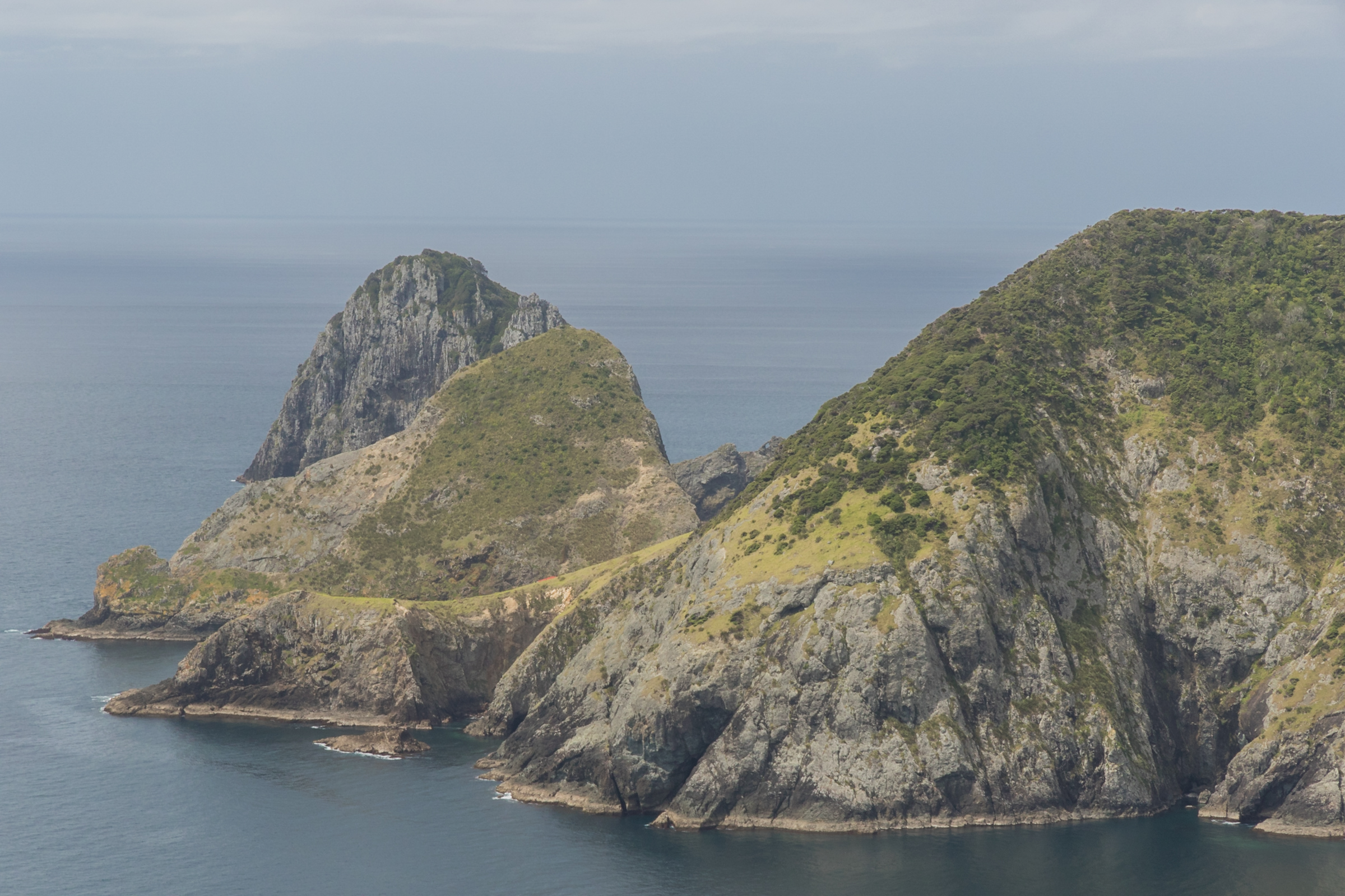 cape brett coast