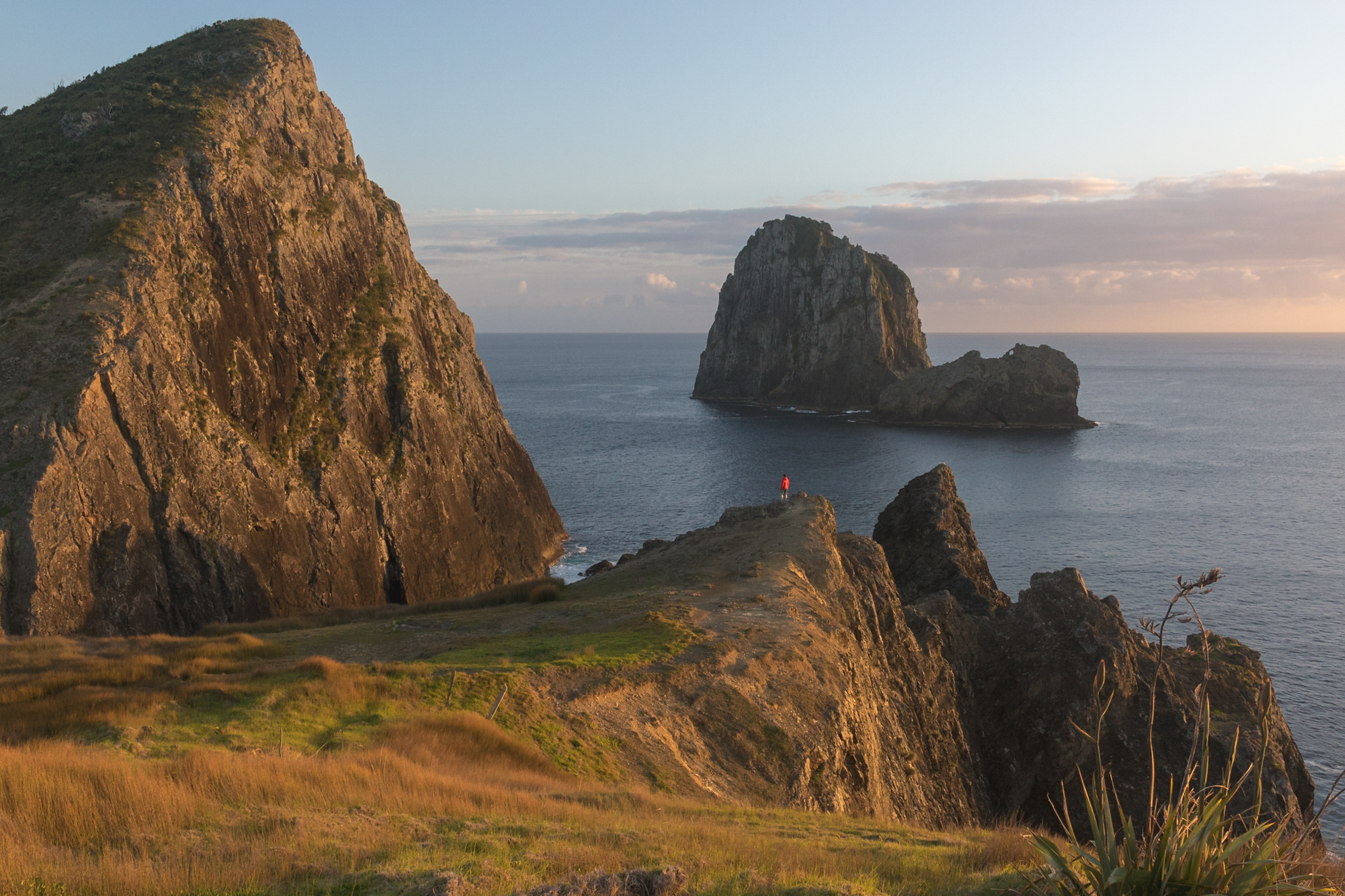 a hiker enjoying sunrise at cape brett in new zealand