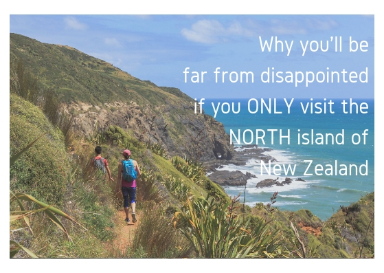 travel recommendations for the north island of new zealand