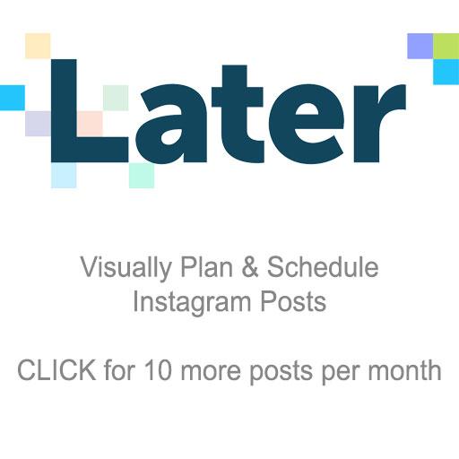later-media.jpg