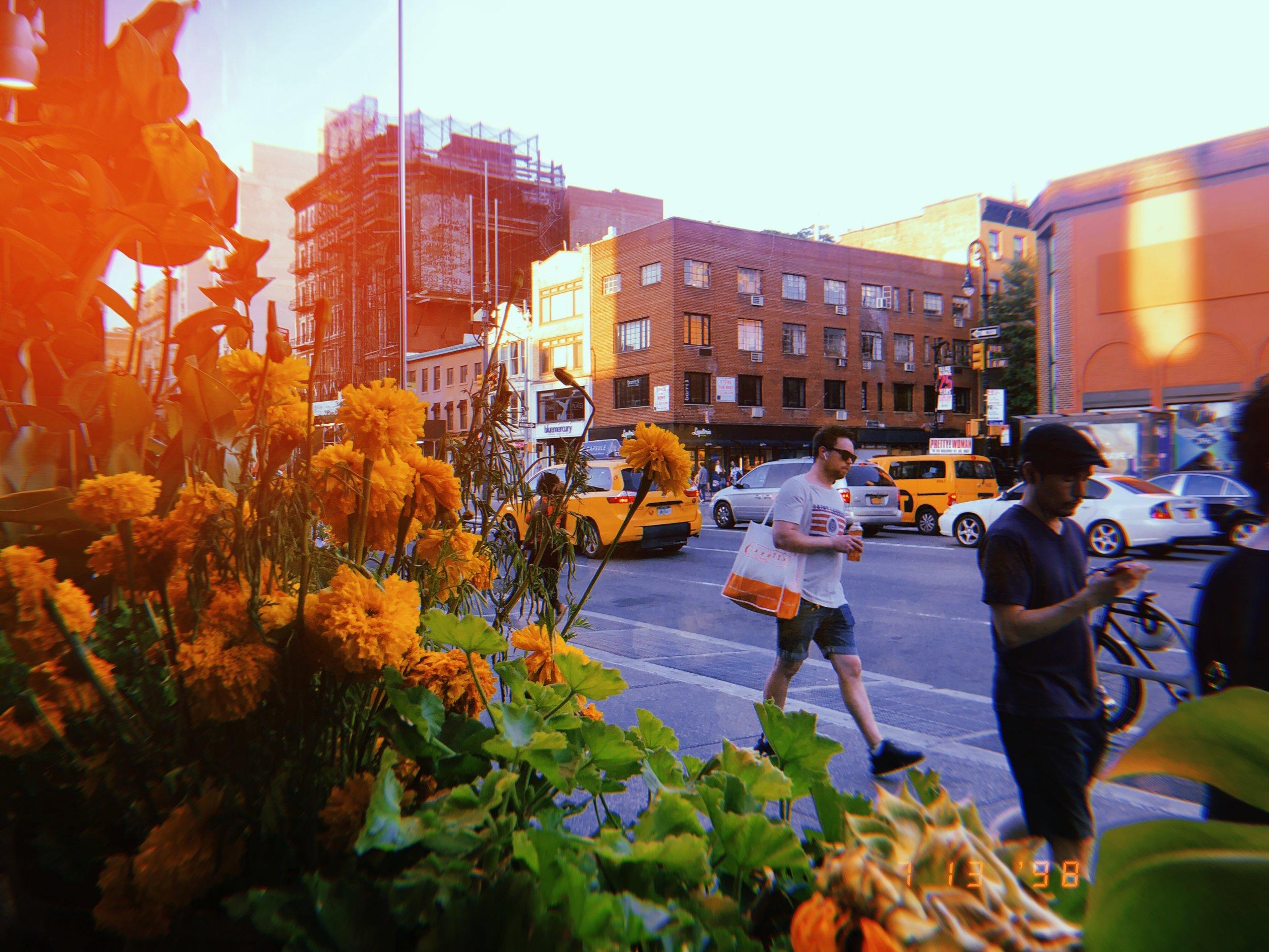 100 Day Photo Challenge Huji — Jasmine Long