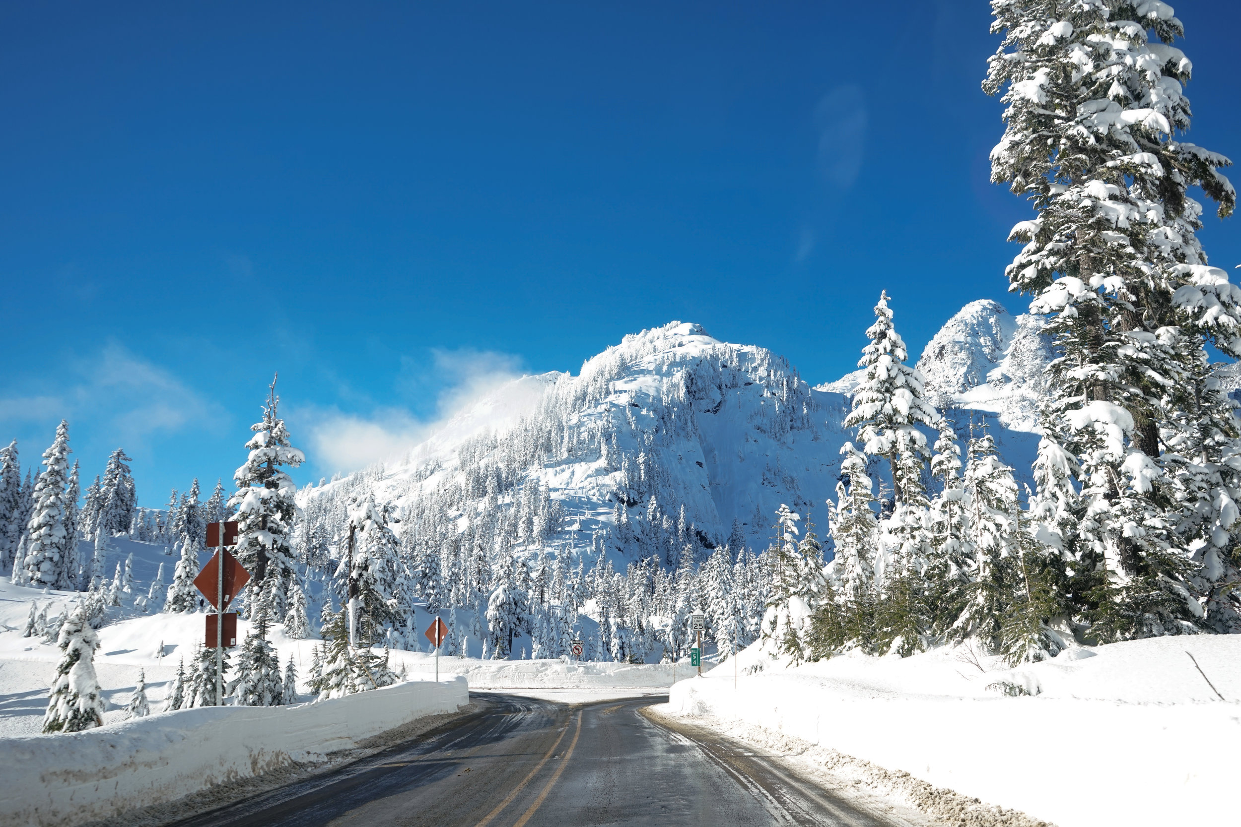 The road up to Artist Point