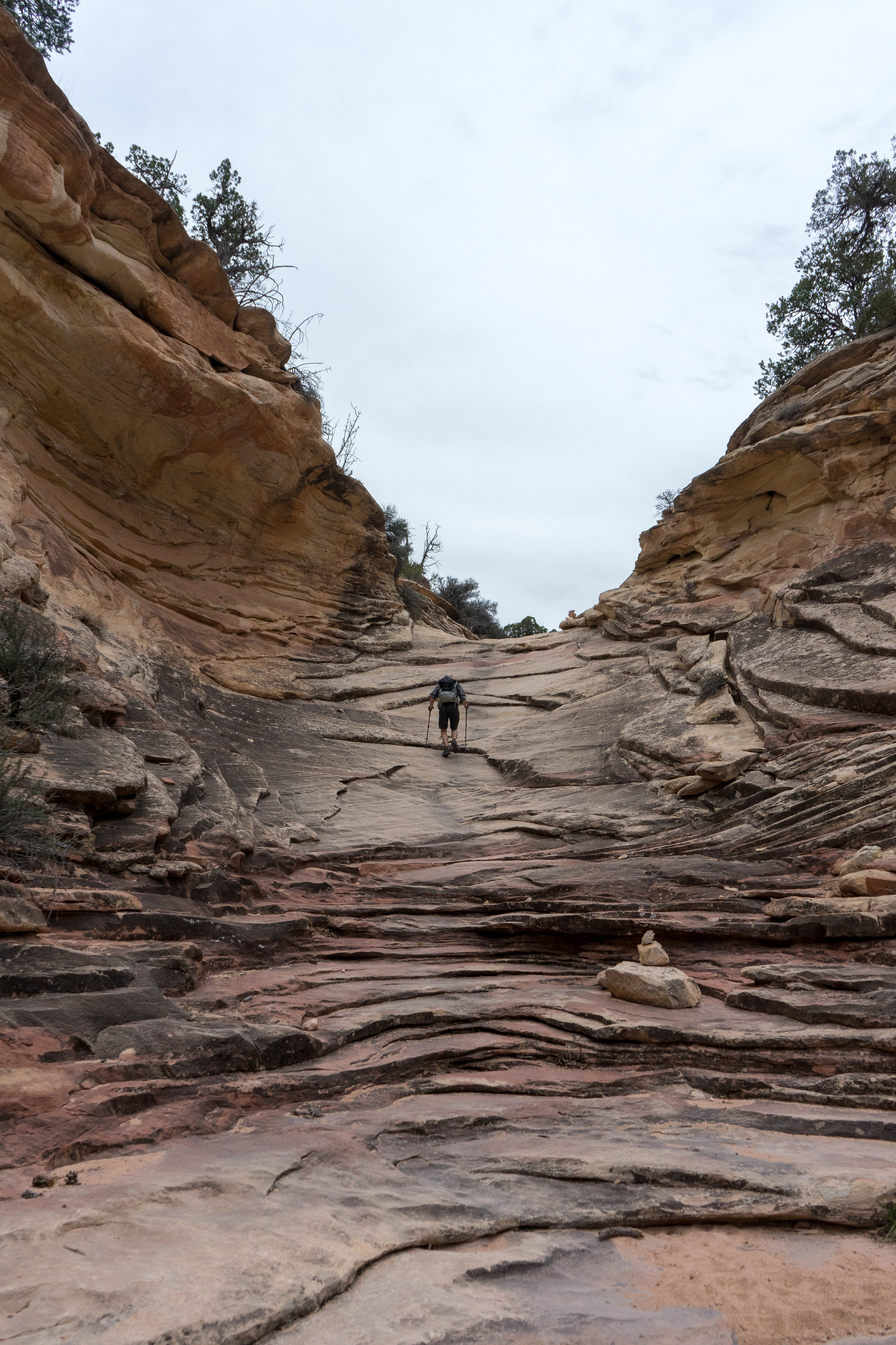 The trail to Druid Arch
