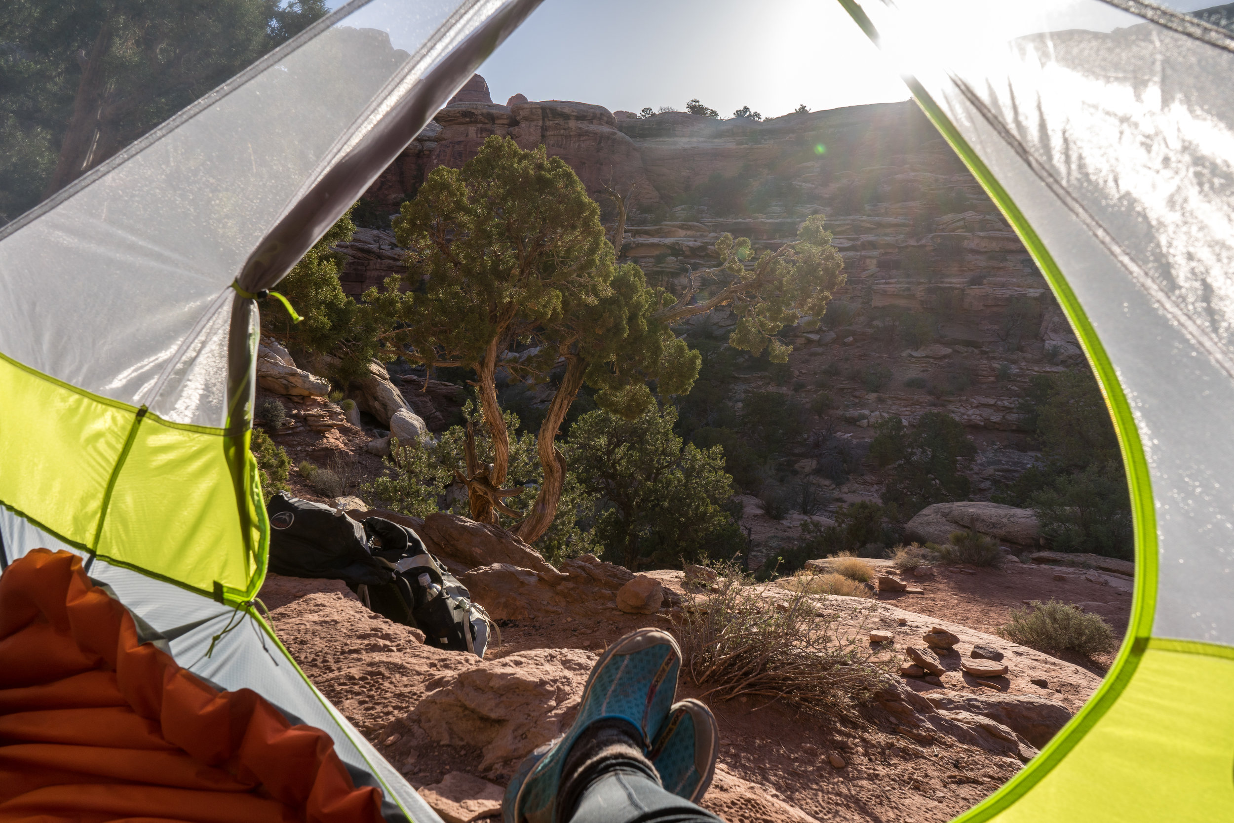 Morning views in Elephant Canyon