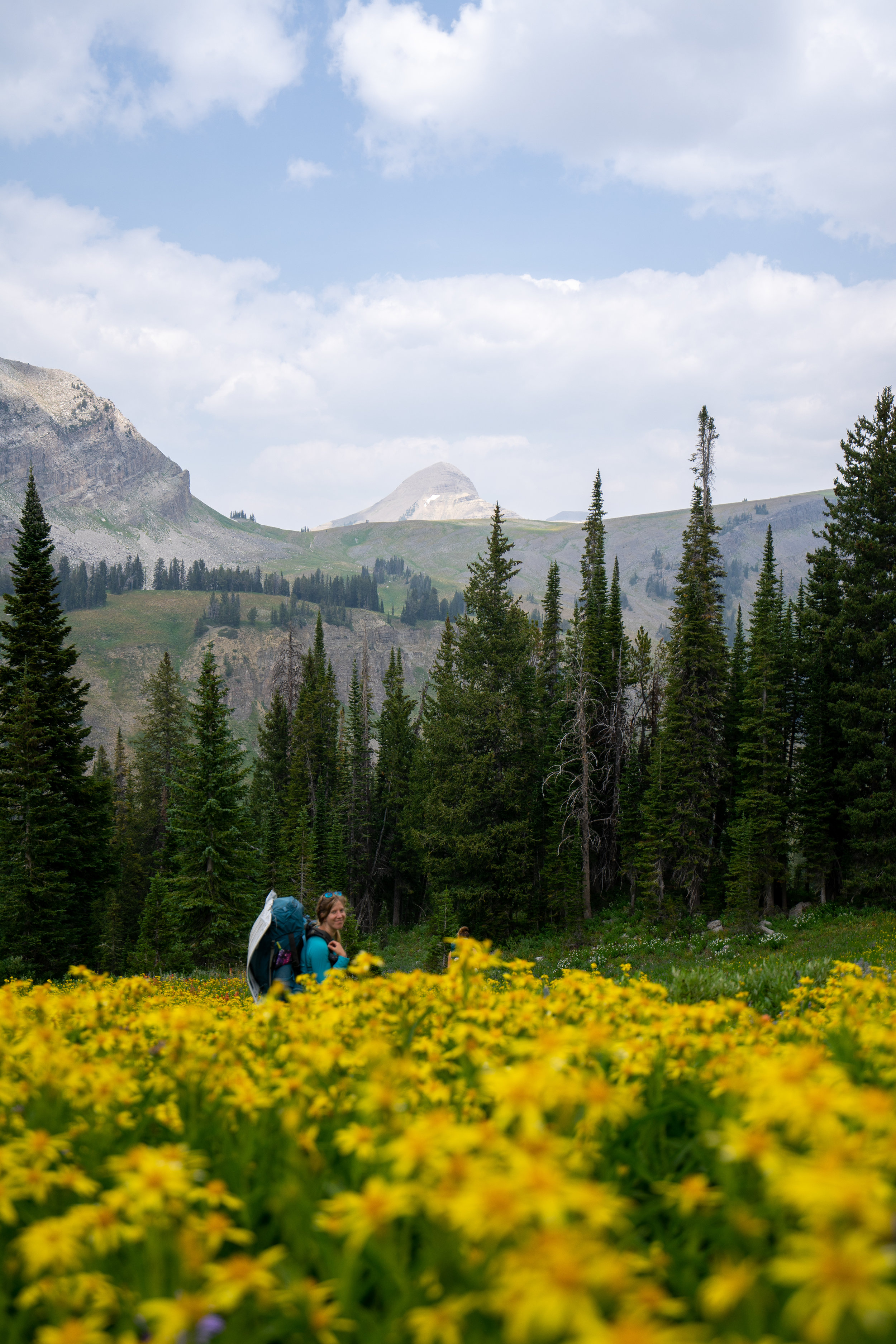 DATE HIKED: 8/19-22TOTAL DISTANCE: 40 milesDIFFICULTY: MODERATELY DIFFICULTREQUIRED PERMIT: YESDOG FRIENDLY: NOLOCATION: GRAND TETON NATIONAL PARKRECREATION PASS: NATIONAL PARK PASS -
