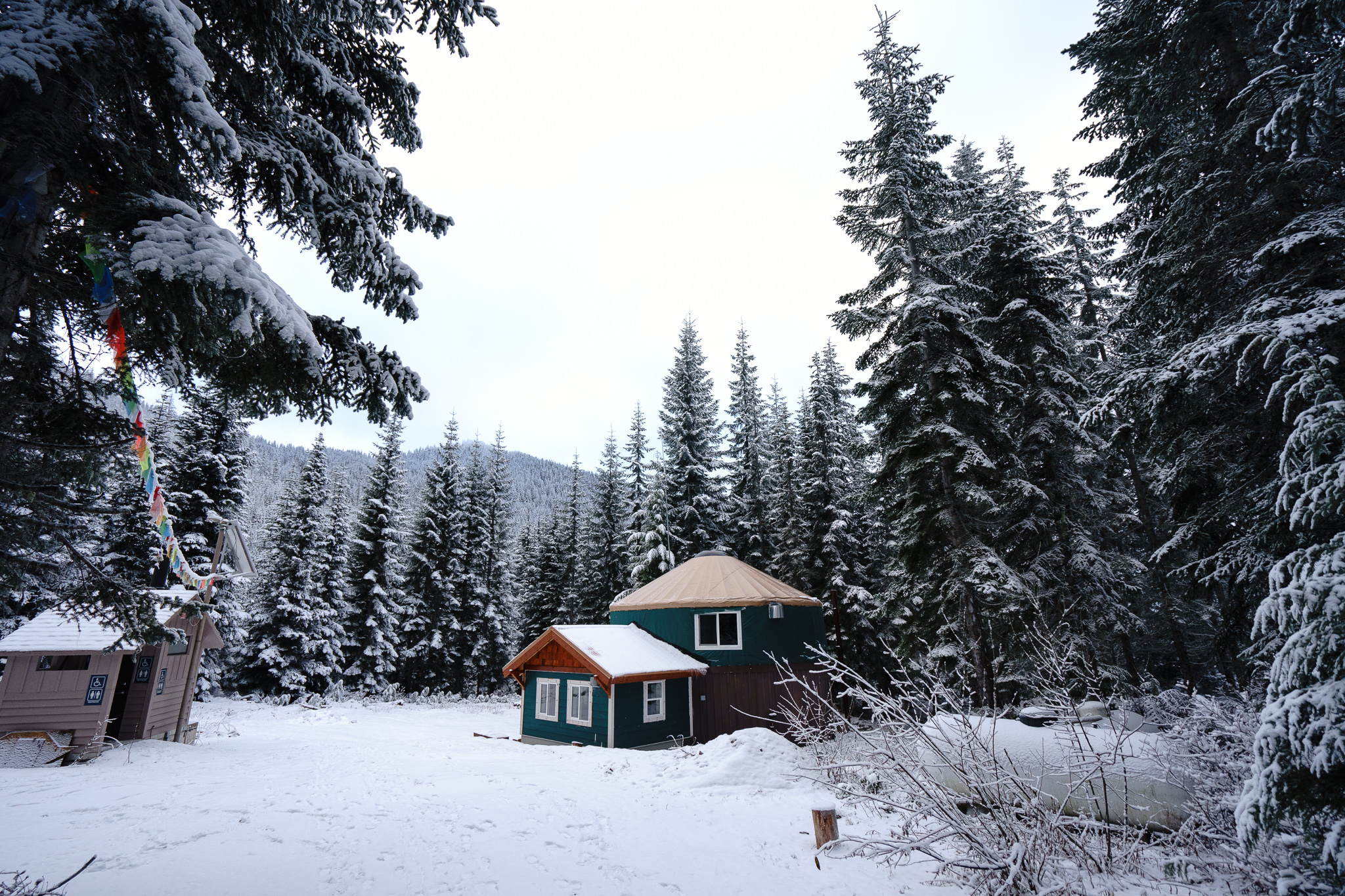 A yurt deep in the woods