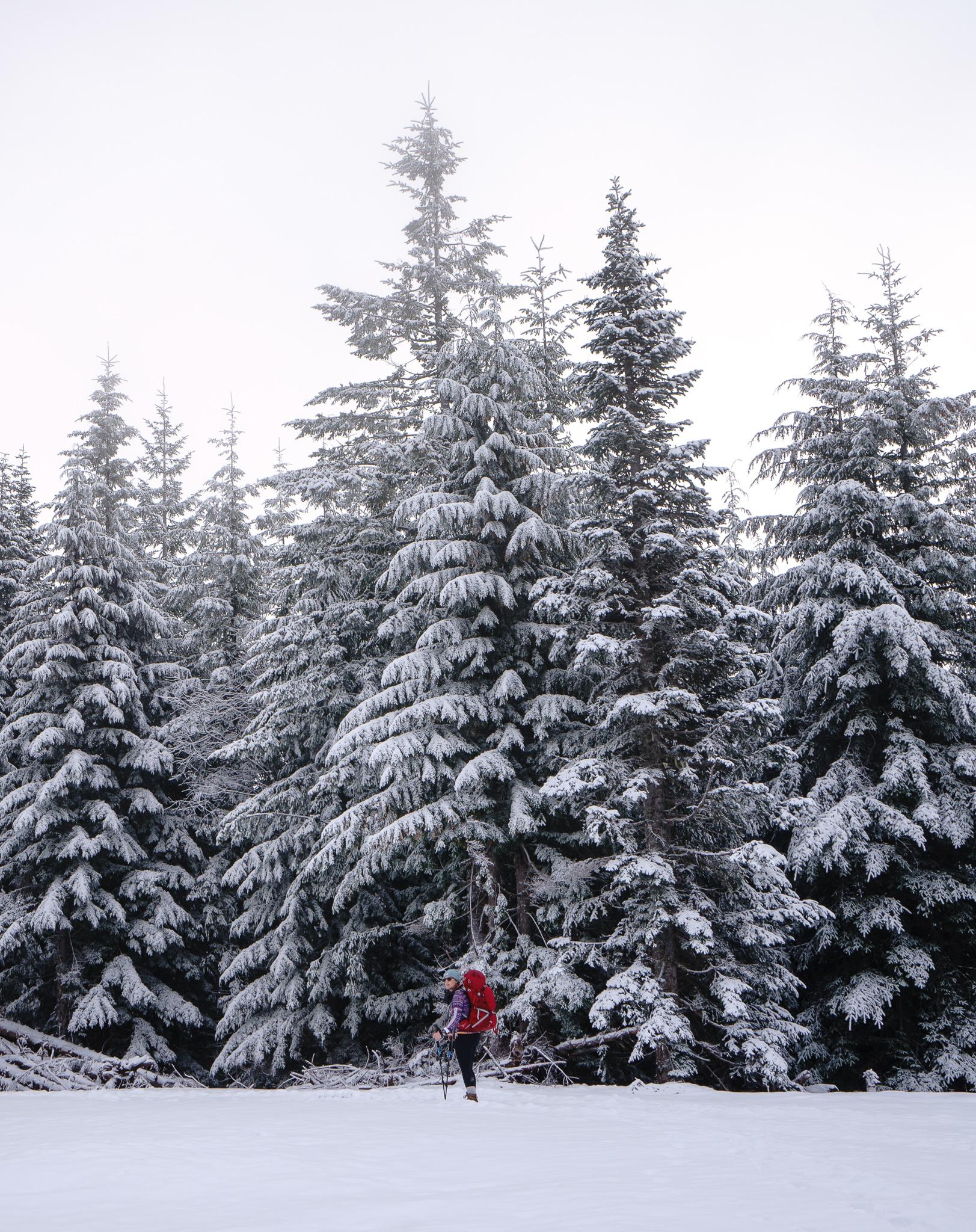 Kaelee + fresh snow