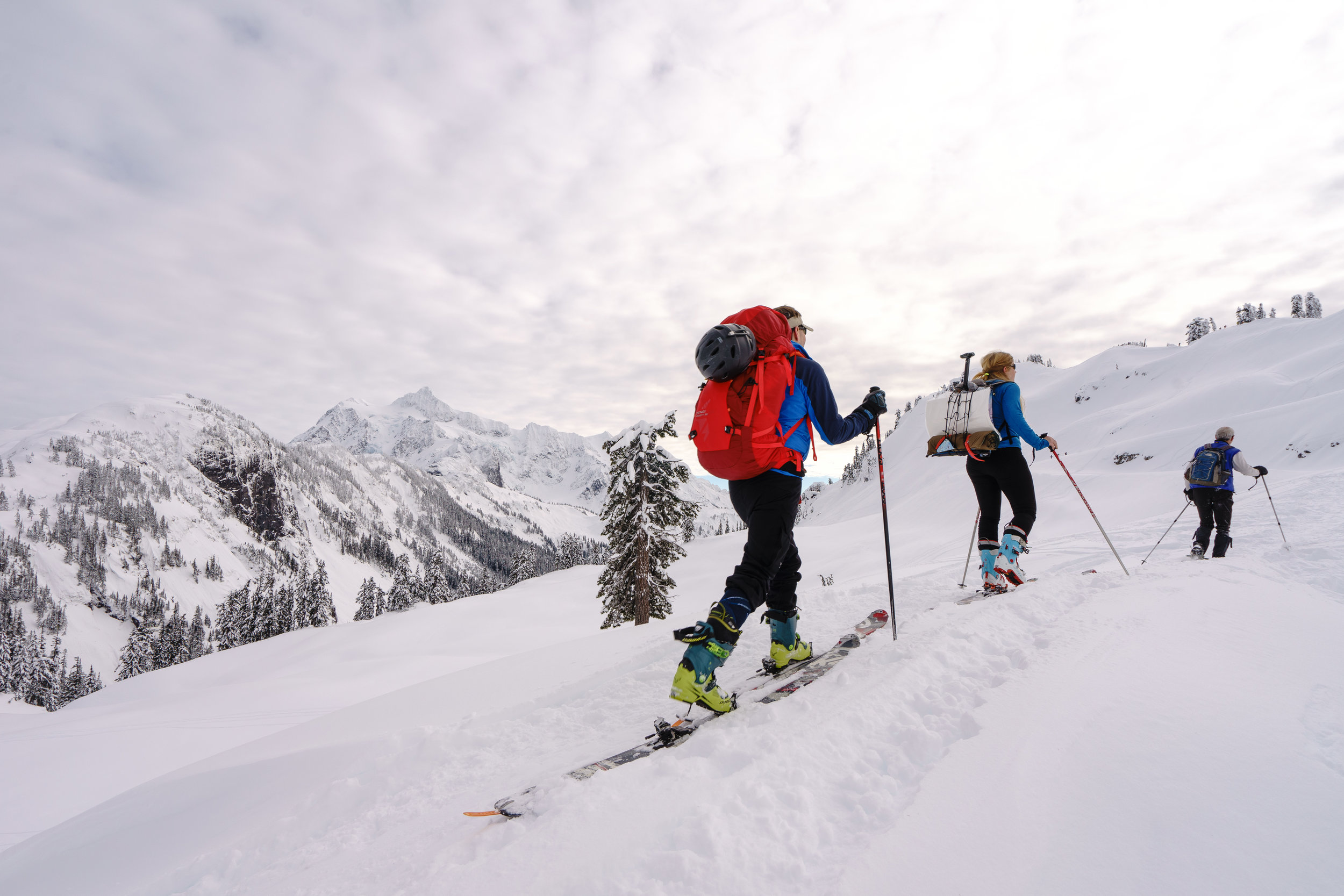 I snowshoed and others in my group skied. Choose your own adventure!