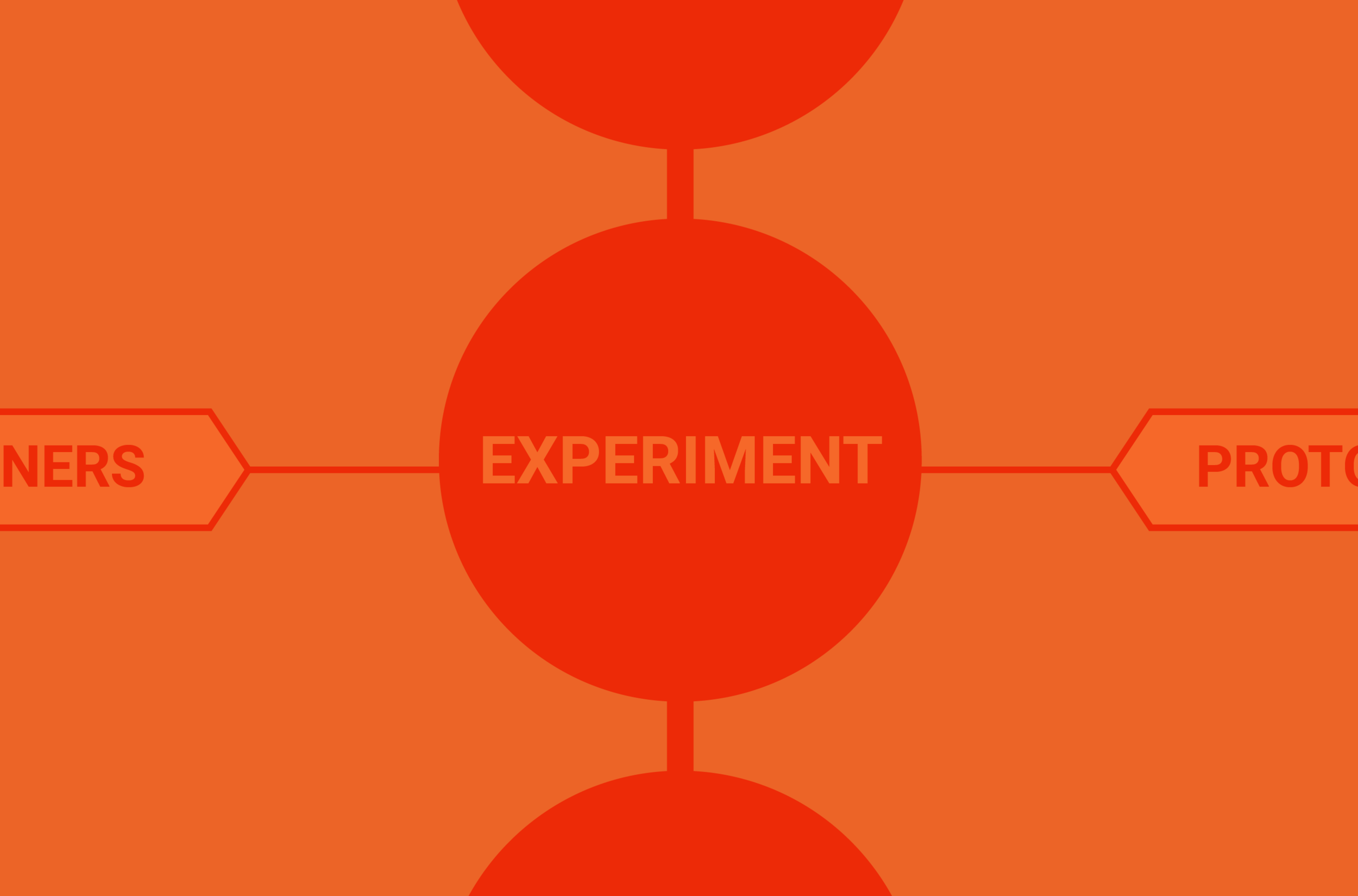 Experiment - We guide you through a lean prototyping process, where you gradually refine and improve your ideas.We also work with you to design a path to impact, outline the key partners and paramaters for launching your solution.