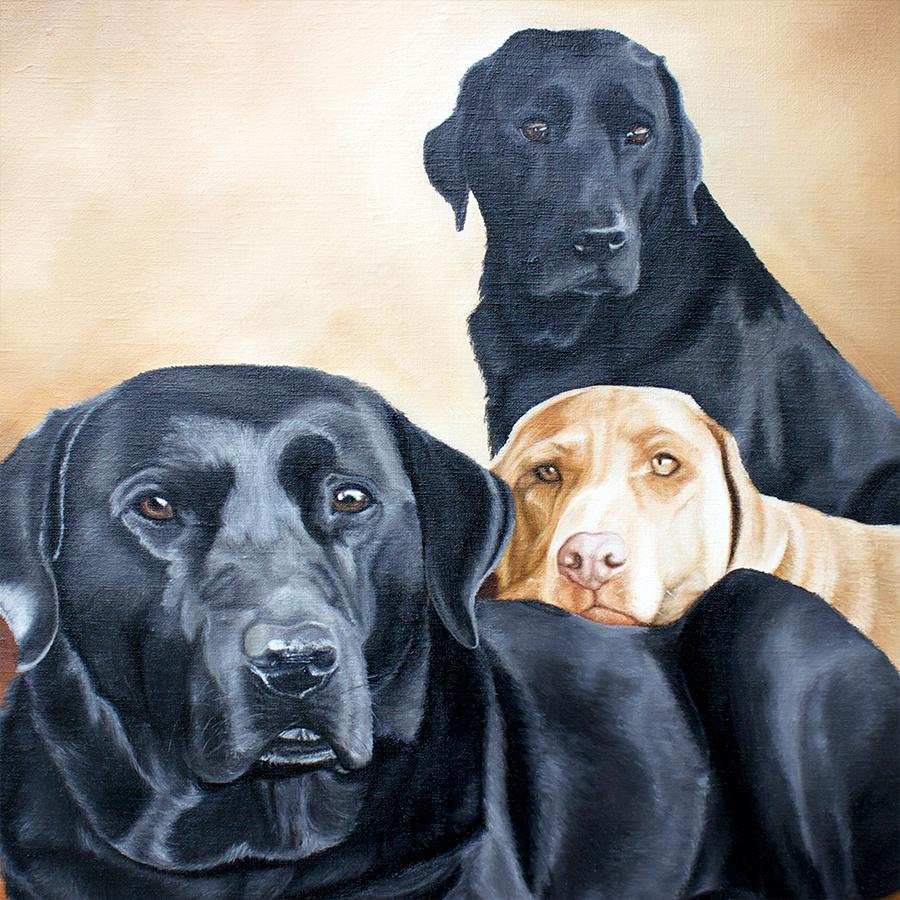 Sam, Buca and Coruba -