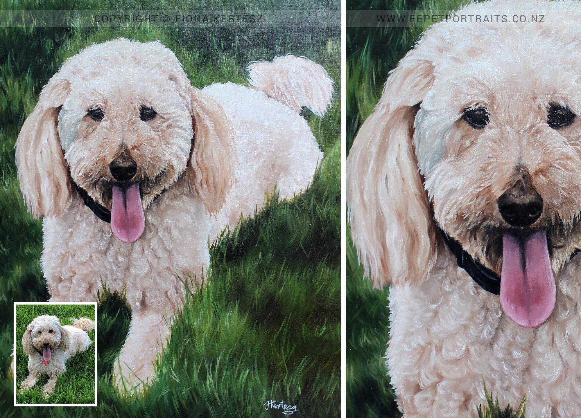 McKenzie, Oil Portrait, 20 x 16 inch