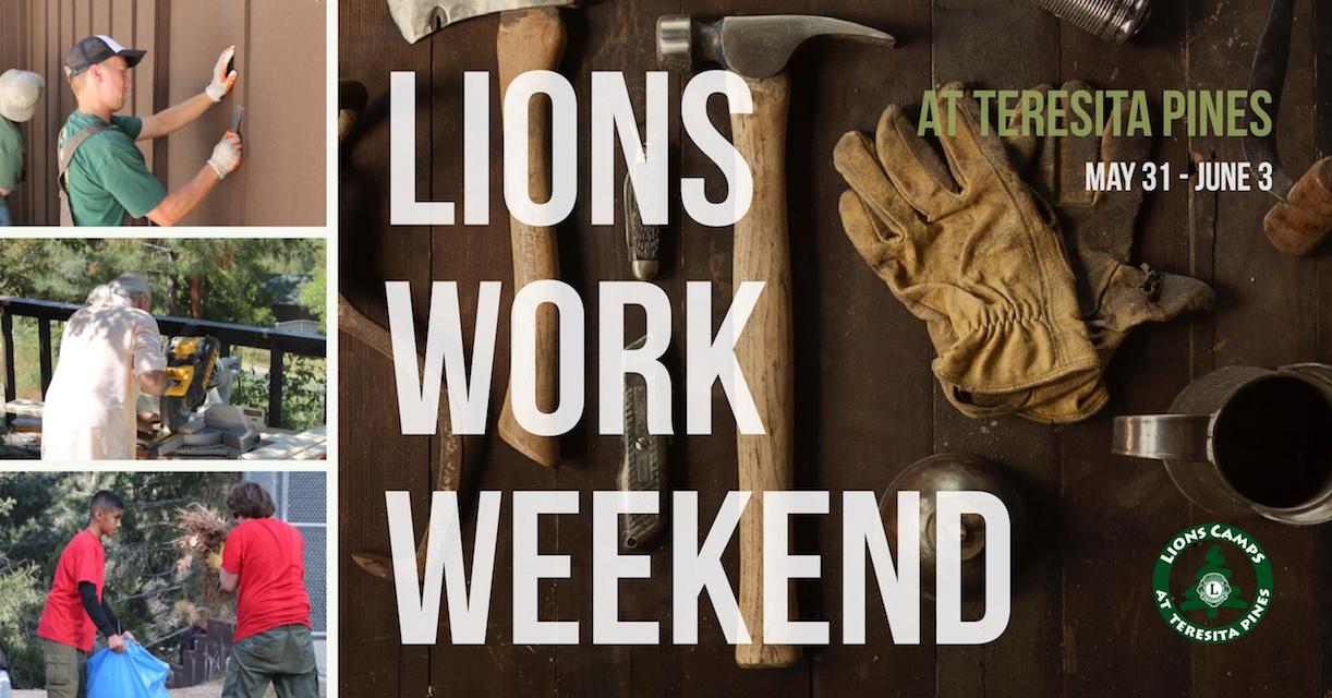 Lions work Weekend Copy12.jpg