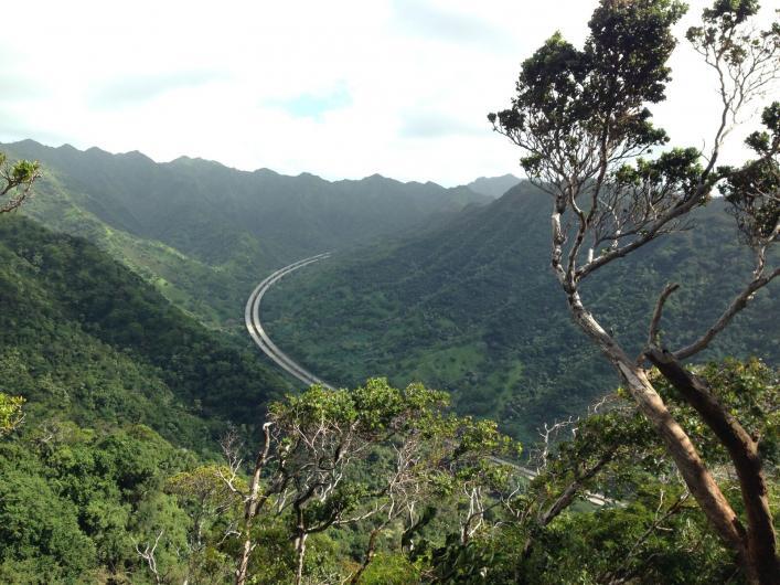 Aiea Loop Trail  https://www.alltrails.com/trail/us/hawaii/aiea-loop-trail