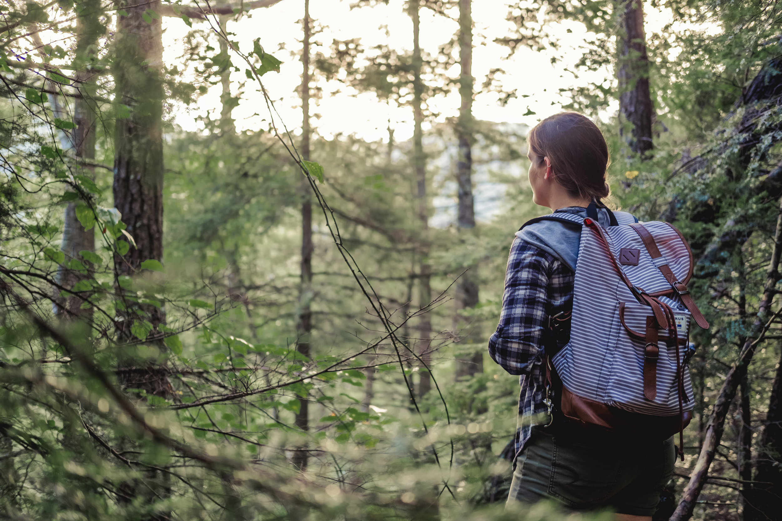 Laurel Falls - Hampton - Adventure Photographer - outdoor lifestyle photography