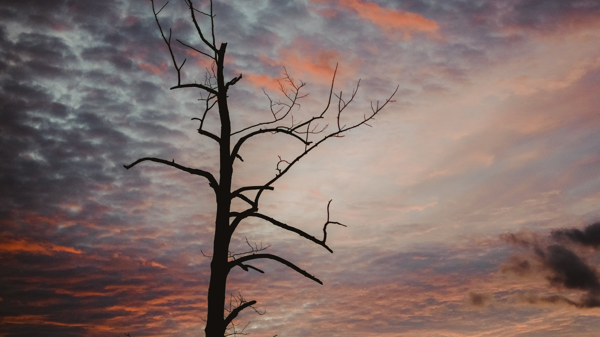 #sunrise #wataugalake #later2018
