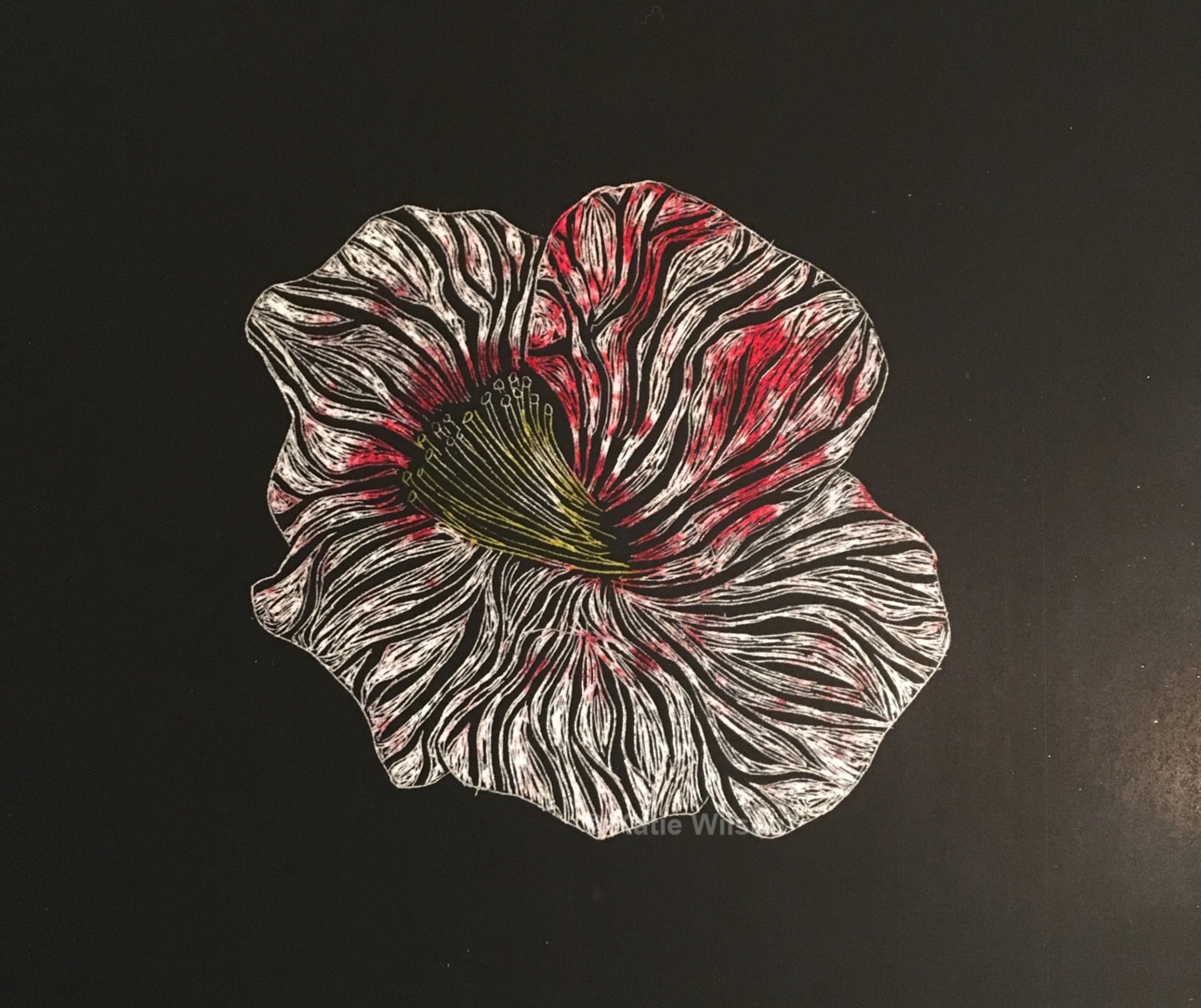 """Pressed, 2018 5.5"""" x 6""""   She pulled out her book and thumbed to Chapter 3 - Red. She eased the wilted flower into position and smiled."""