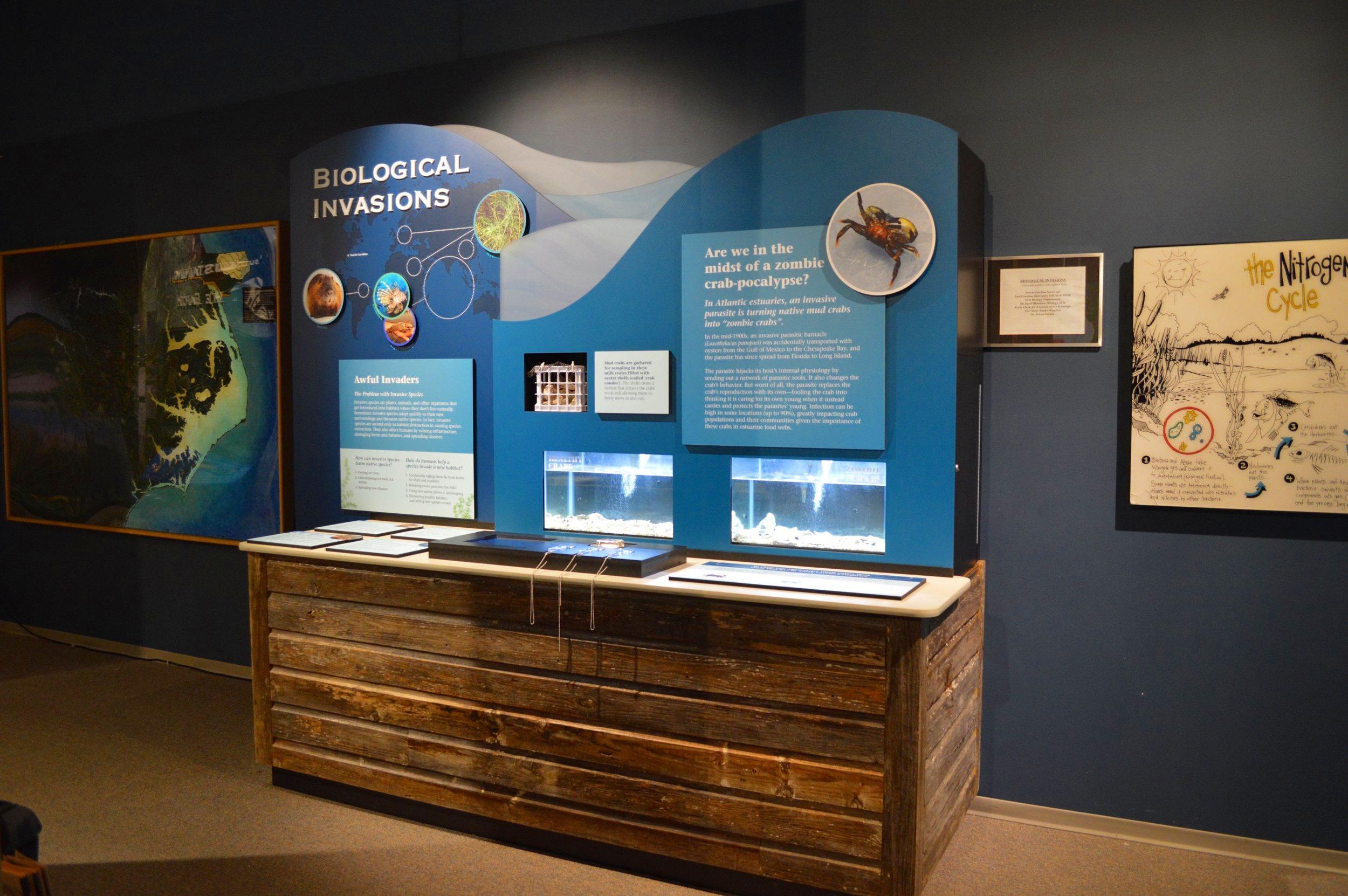 NORTH CAROLINA ESTUARIUM,  interactive exhibit  Exhibition concepting, design and production Collaboration with Dr. April Blakeslee, ECU Biology