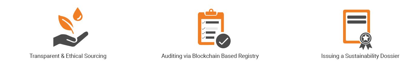 Blockchain for Sustainability_A.jpg