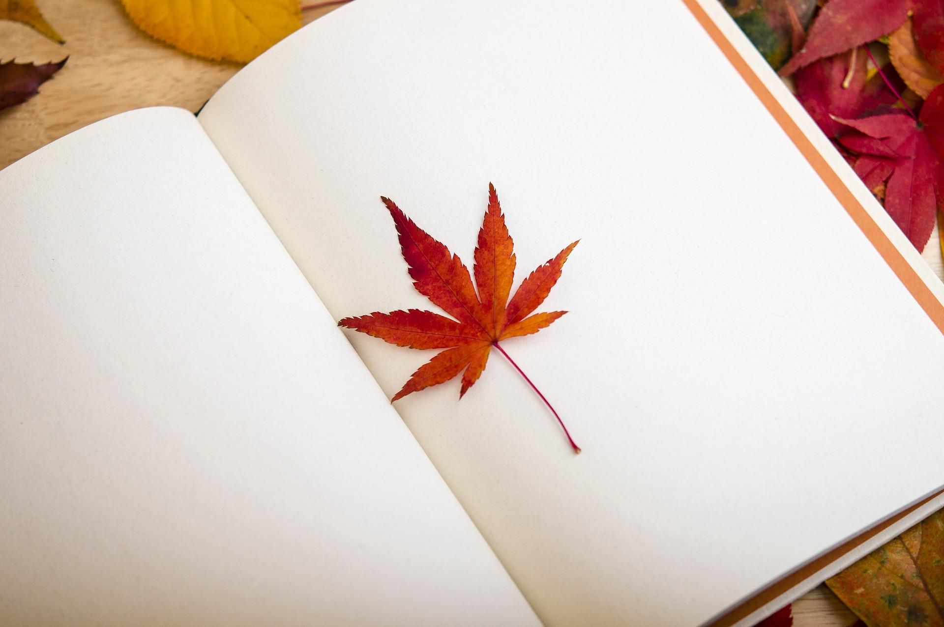 读书会 - 每个月我们都会读一本书。请点击每个月的书目介绍加入书目讨论。祝大家阅读愉快!