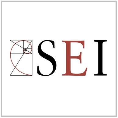 SEI International.PNG