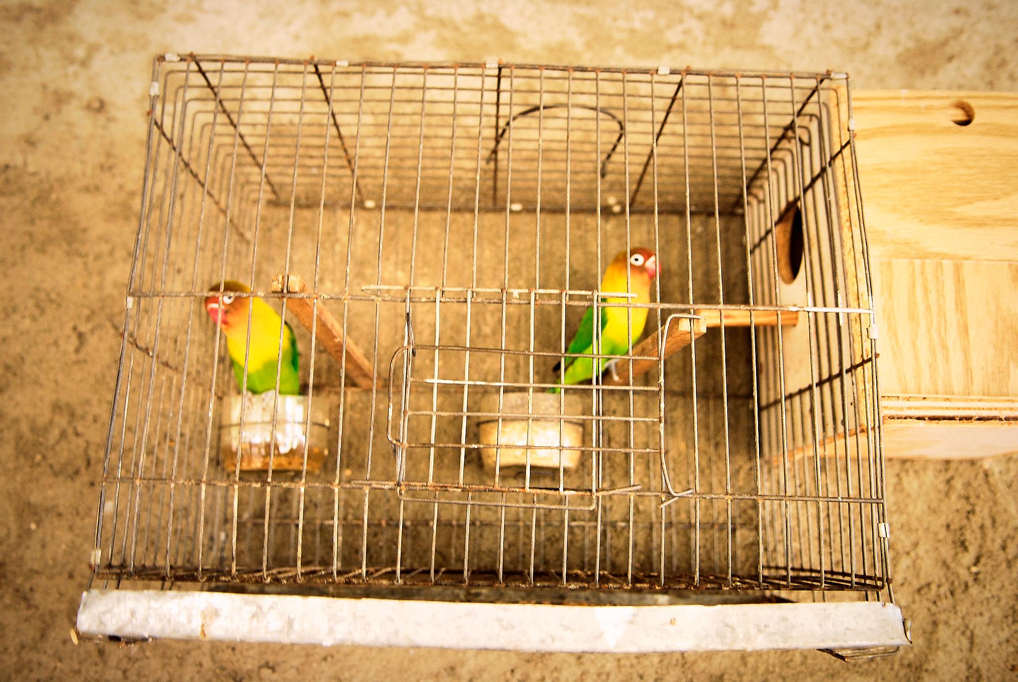 CUBA-09.jpg