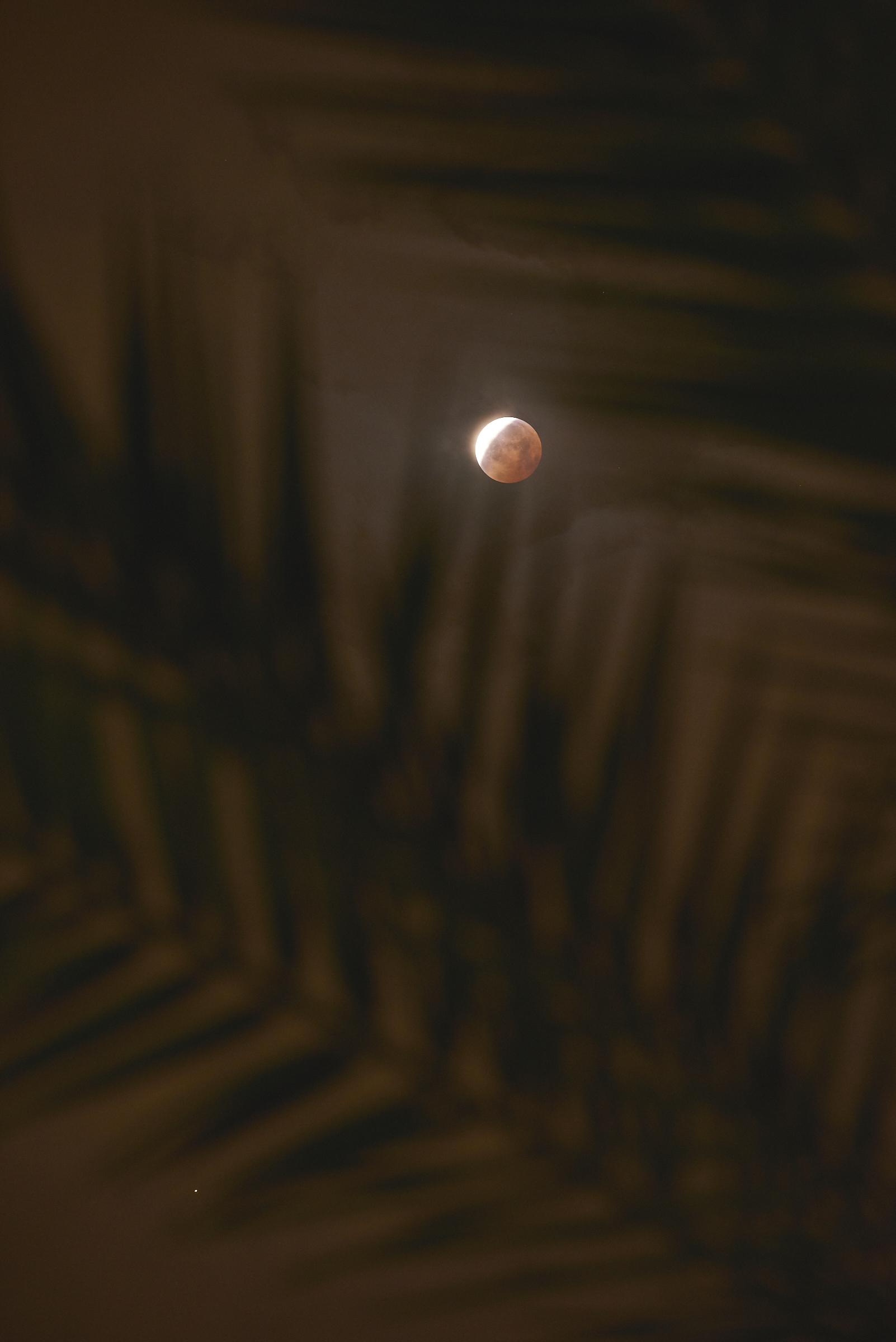 Eclipse-04.jpg