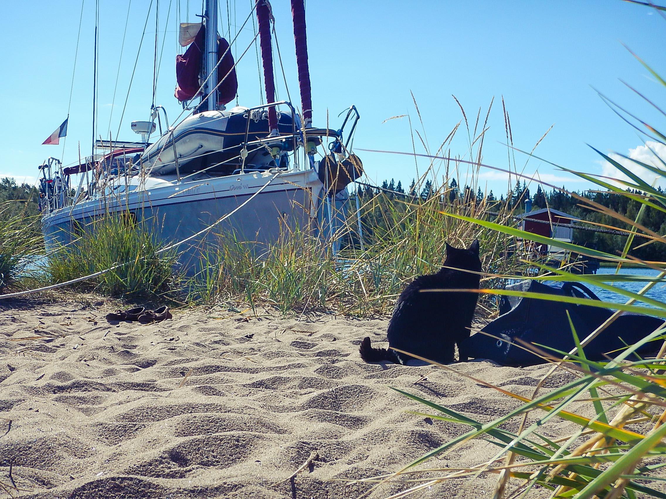 Pirate on the beach at Seskarö. Photo by:François & Valérie