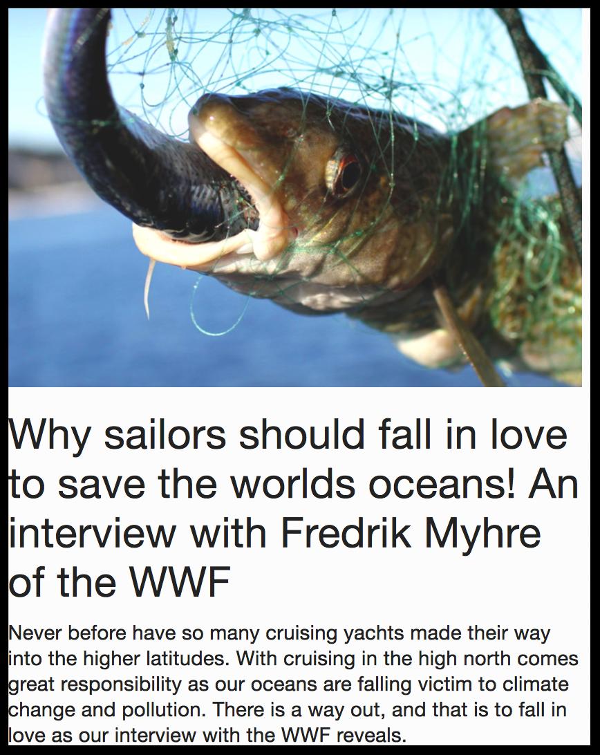 Interview WWF