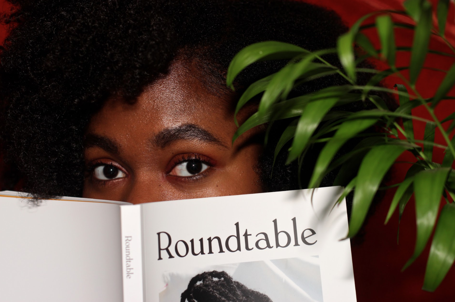 Roundtable Journal Ourselves and Others