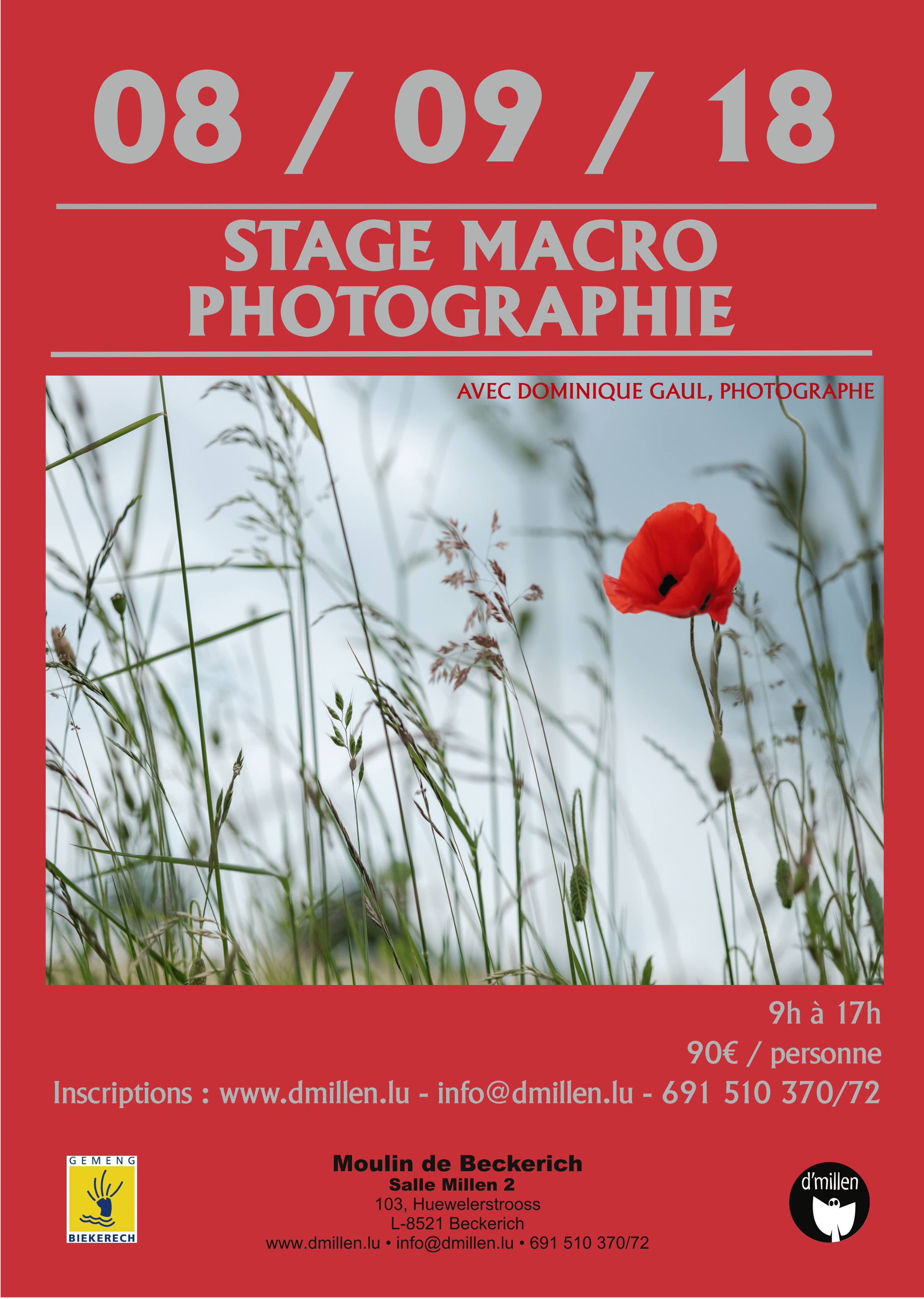 Affiche Stage macro-bd-1.png
