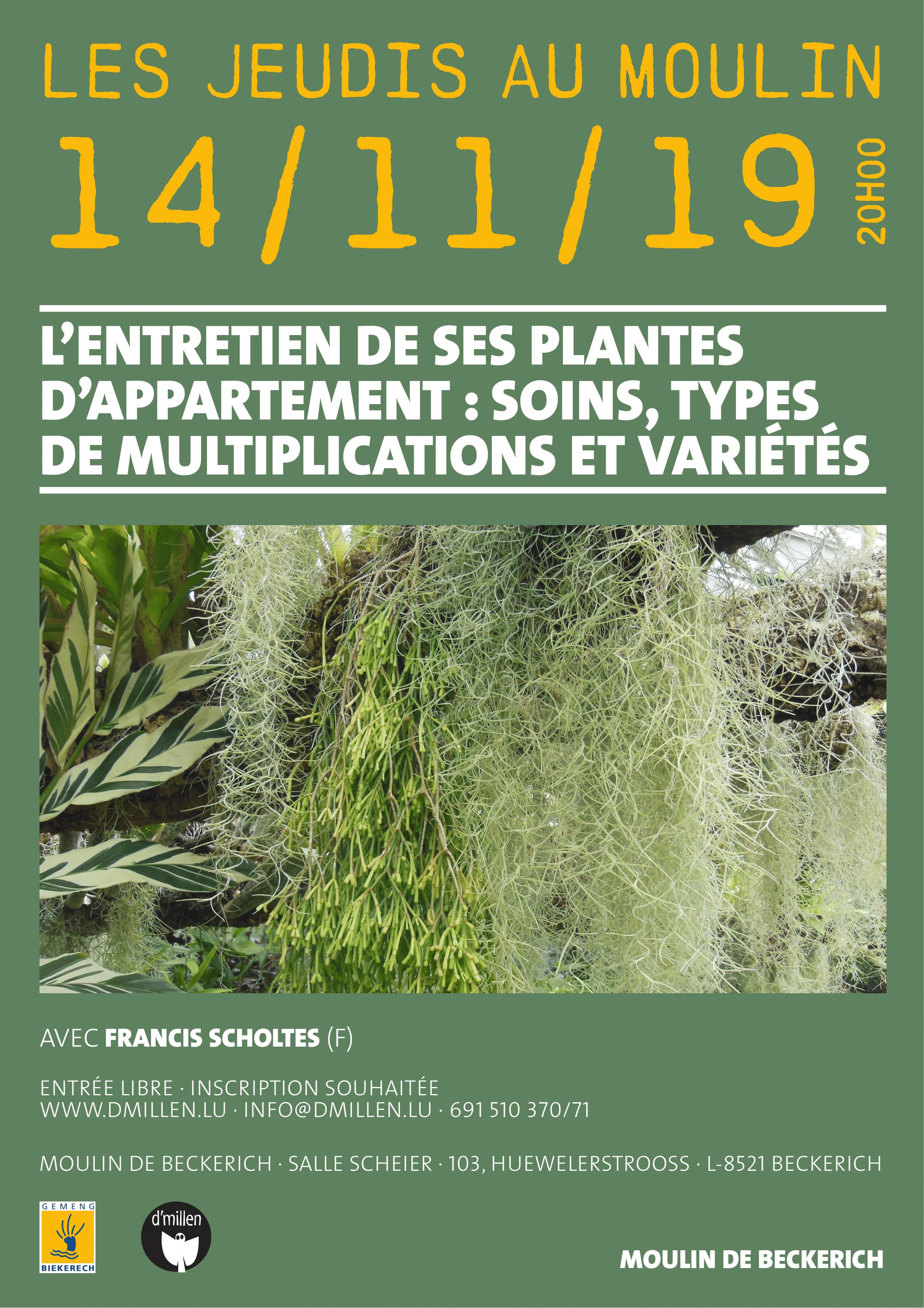 11-19affiche plantes-bd-1.png