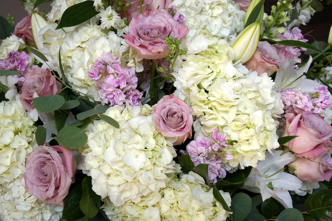 white pink 1.jpg