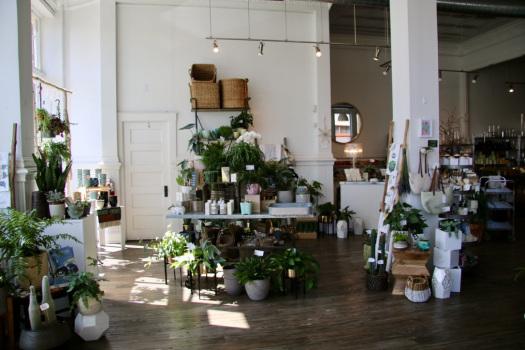 Eden Floral Boutique: A Cincinnati Oasis - The {House} Plant Momma | August 2017