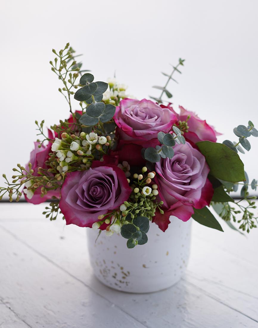 vd purple rose promo 3.jpg