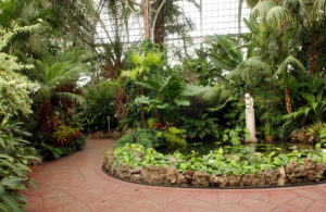 The Softer Side of Chicago - Texas Lifestyle Magazine September 27, 2016In the heart of the nation's third largest city sits the Lincoln Park Conservatory, a tranquil repose from the hustle and bustle of modern life. Read More