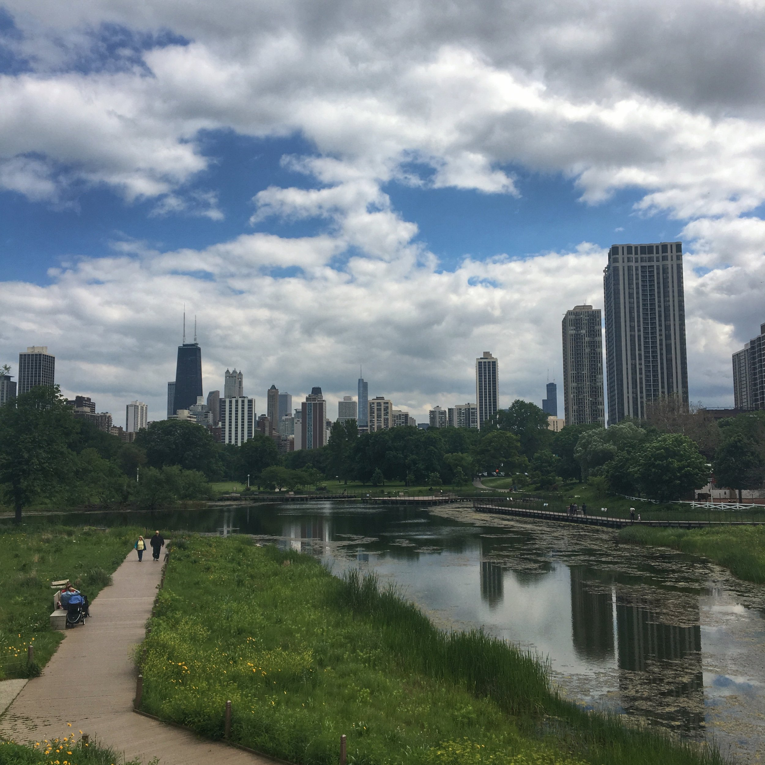 chicago-skyline-lincoln-park-zoo.jpg