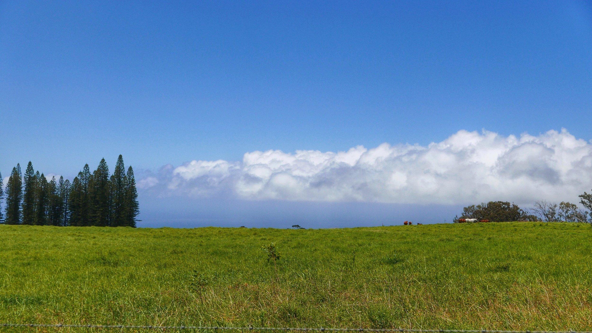 clouds-maui-hawaii.jpg