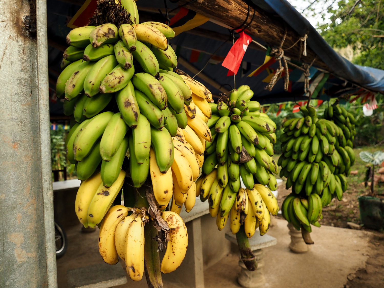 Havana Street Photography Bananas.jpg