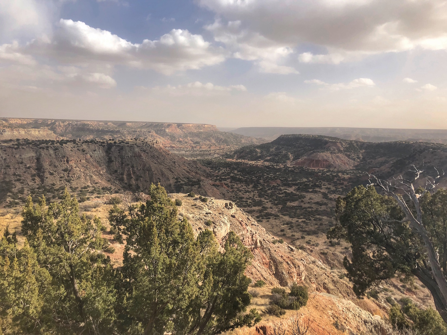 Palo Duro Canyon in Texas is the second largest canyon in the United States