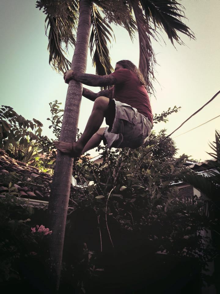 Copy of tree-climb.jpg