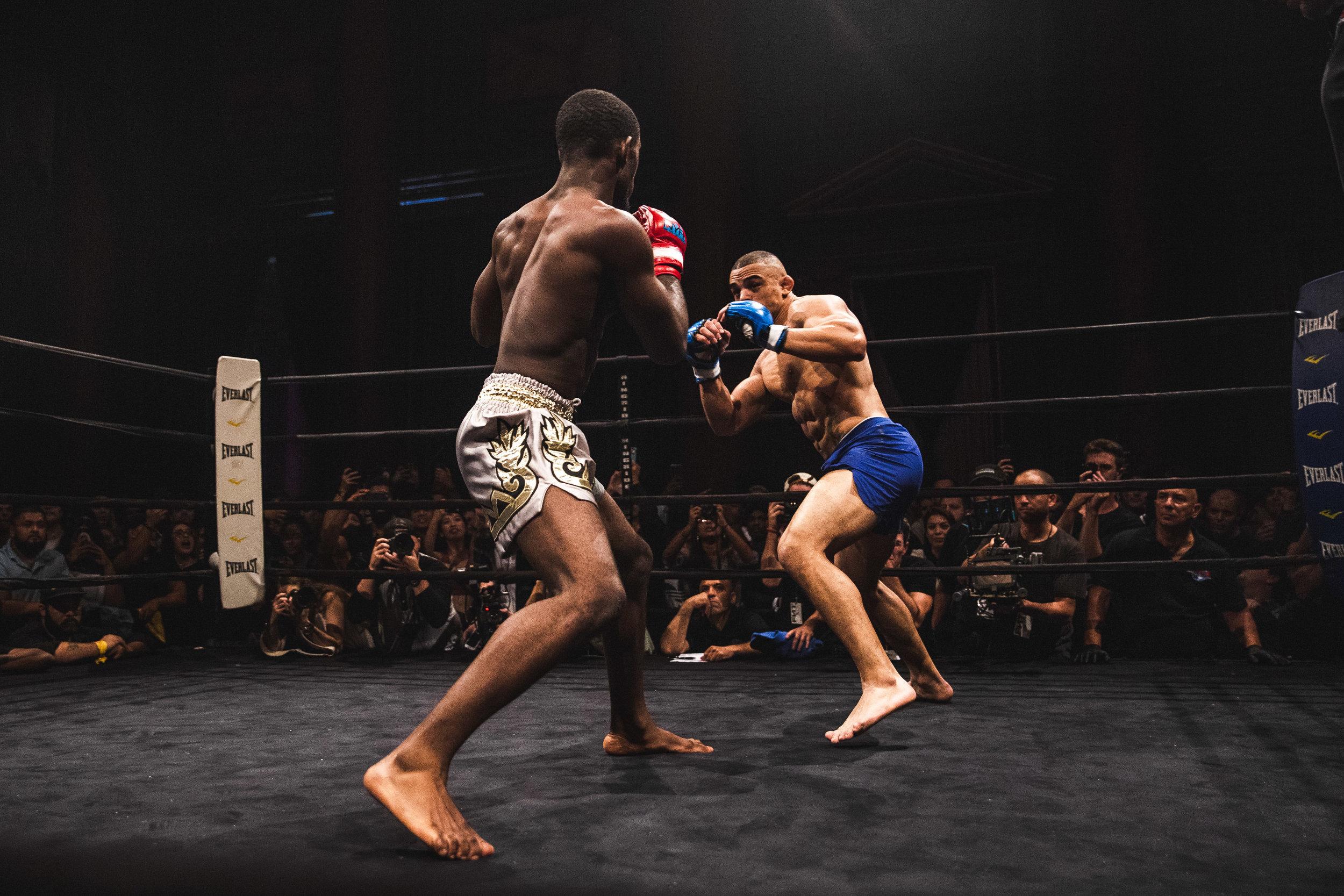 53_Fight Night Vol 2_svk.jpg