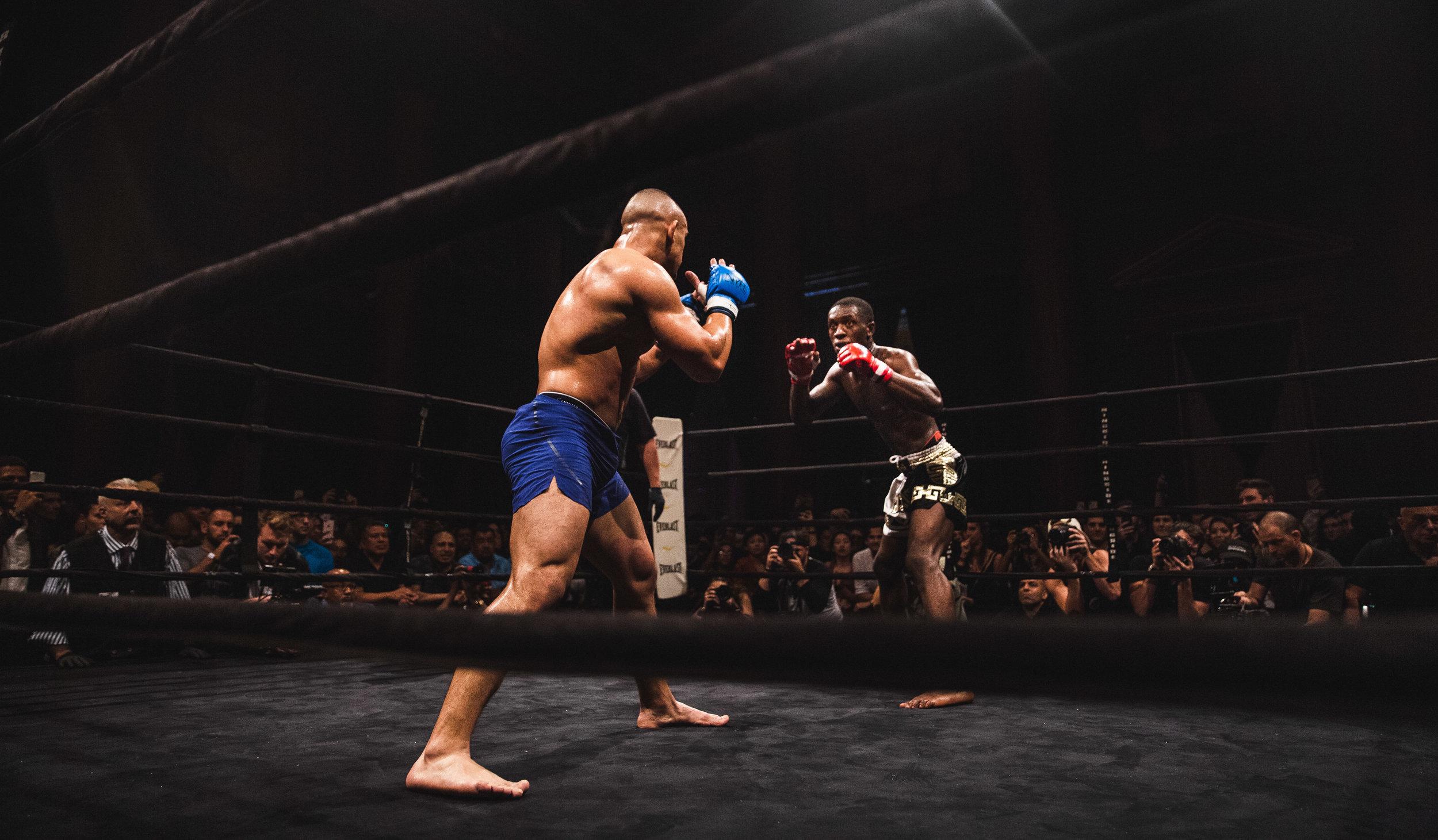 61_Fight Night Vol 2_svk.jpg