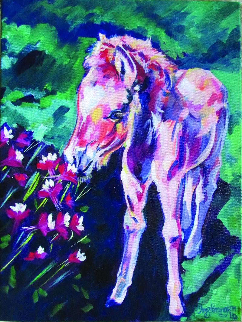 """""""Smelling the Flowers"""" portrait of Julia's 2 month old colt, Uller. She captured his essence perfectly!"""