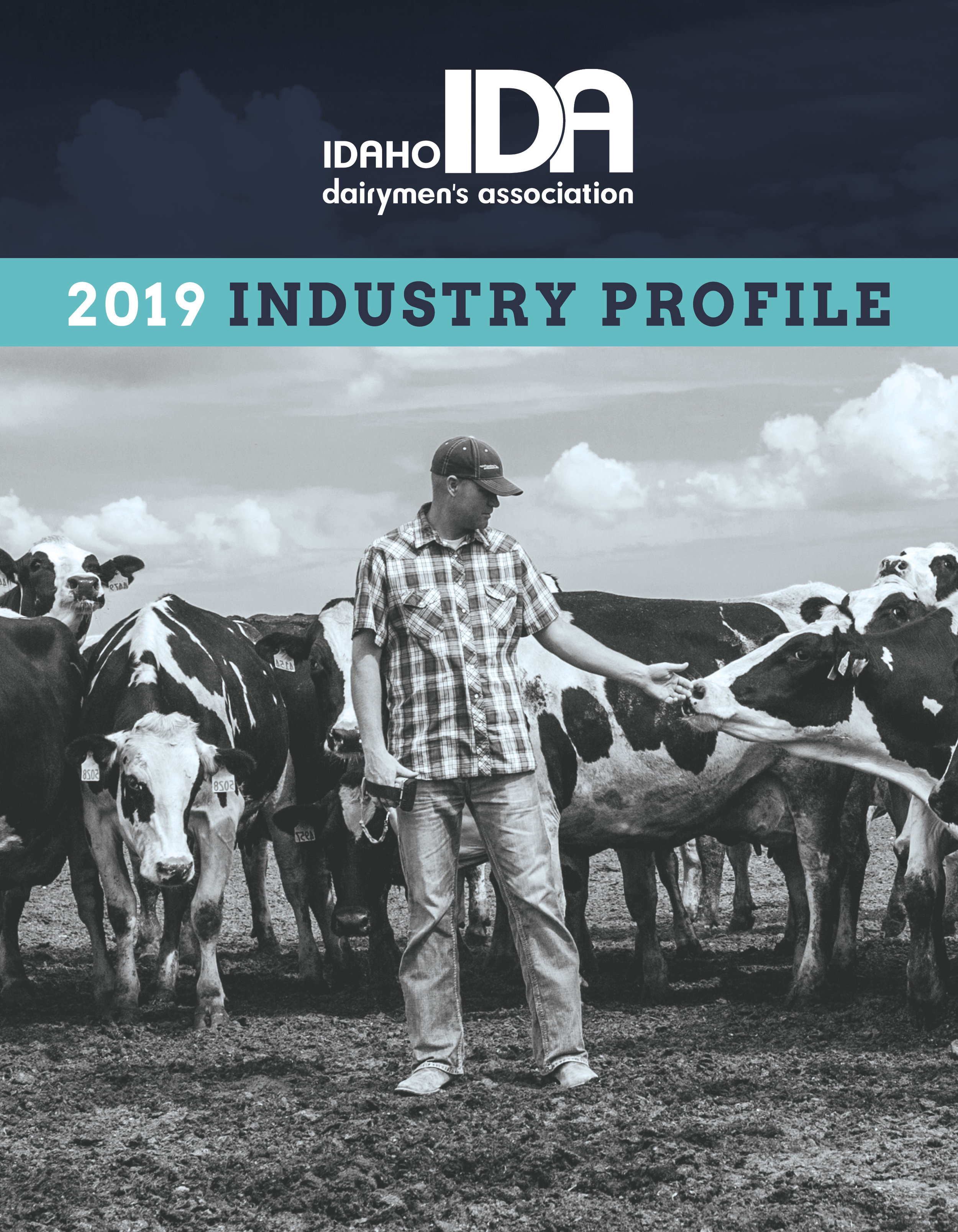 2019 Industry Profile_Cover.jpg